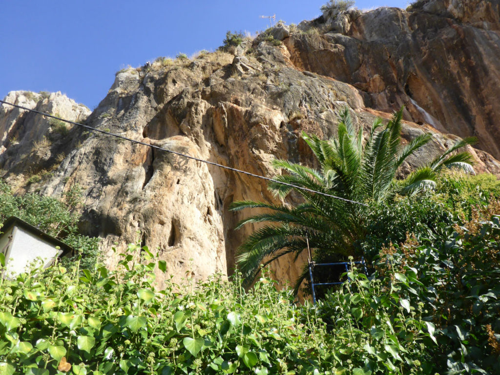 Solana de Granada - Climbing and outdoor hostel: garden with palm tree and rock view